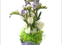 Hướng dẫn cách cắm hoa sắc trắng đẹp lung linh