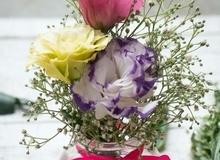 Trổ tài cắm hoa đẹp cho nhà mình ngập tràn sắc xuân