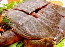 Những ai không được ăn thịt ba ba?