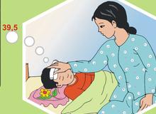 Lưu ý phòng ngừa viêm não Nhật Bản khi đang vào mùa