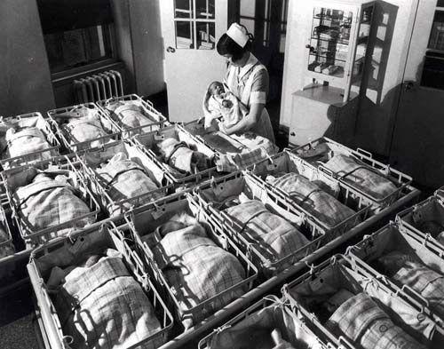 Cợ hội thụ thai con trai và con gái là như nhau - Trước khi mang thai