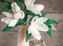 Dùng giấy nhún làm hoa mộc lan đẹp như hoa thật