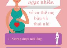 13 điều đáng ngạc nhiên về mẹ bầu và thai nhi