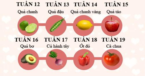 Mô tả thú vị về kích thước thai nhi trong bụng mẹ - 2