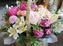 Cách cắm hoa rực rỡ cho nhà mình đầy sức sống