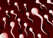 7 dấu hiệu báo chồng bạn có tinh trùng khỏe mạnh