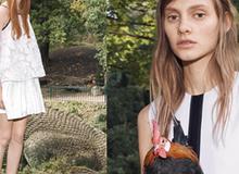 Victoria Beckham cho mẫu đi chân đất, bế gà trong lookbook mới
