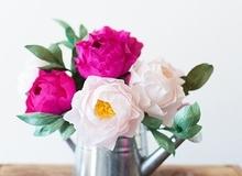 Làm hoa mẫu đơn giấy đẹp như hoa thật
