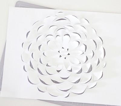 Làm tranh hoa 3D