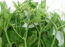 """Dấu hiệu nhận diện các loại rau, củ ngậm thuốc """"kích phọt"""""""