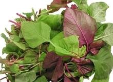 Điều cần cân nhắc khi ăn rau mồng tơi, rau muống, rau ngót và rau dền