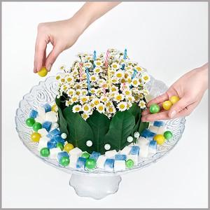 Cắm hoa cúc thành bánh gato xinh xắn 6
