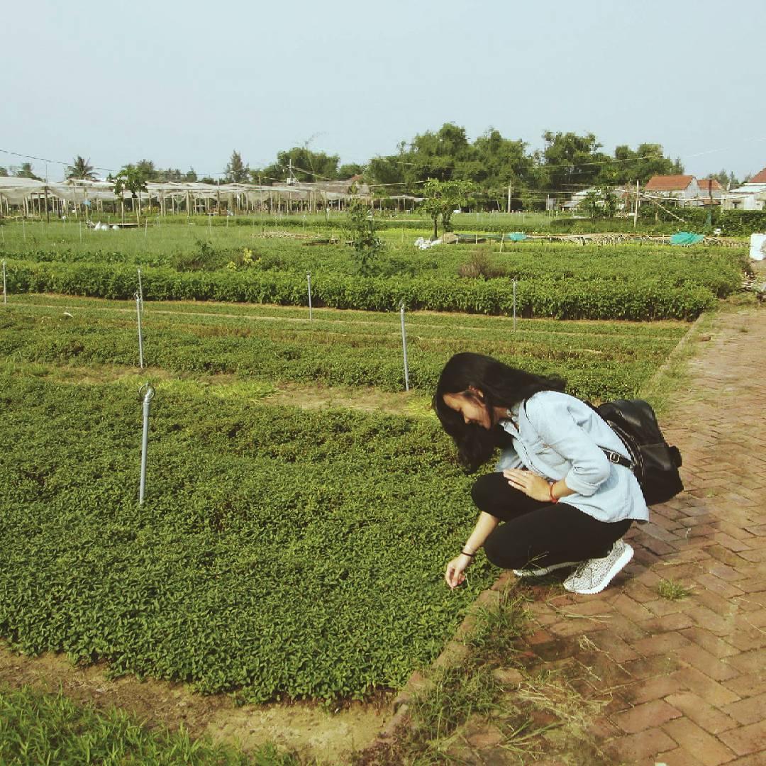 Không gian xanh mát của làng rau sẽ là nơi giúp bạn lưu lại nhiều bức hình đẹp. Ảnh: n_quynhhh/instagram
