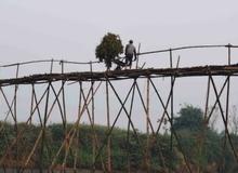 Lắc lẻo qua cầu tre Cẩm Đồng