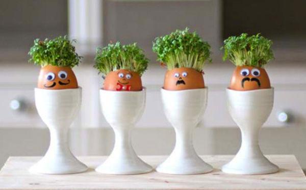 Các cách tái sử dụng vỏ trứng độc đáo mà xinh lung linh - Mẹo vặt