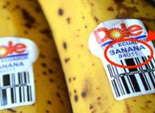Hãy cẩn thận với những trái cây nhập có số 8 trên nhãn, vì...