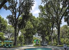 Thảo Cầm Viên Sài Gòn gây ngỡ ngàng cho người lần đầu thăm