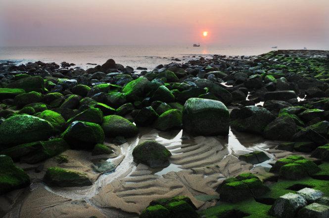 Bình minh huyền ảo trên bờ kè xanh ngắt màu rêu - Ảnh: Dương Thanh Xuân
