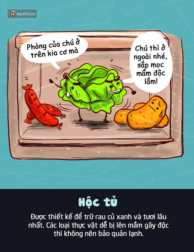 Đây là vị trí bạn nên đặt thực phẩm trong tủ lạnh để giúp chúng tươi ngon lâu nhất - Ảnh 3.