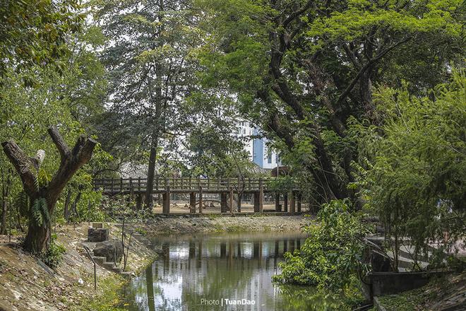 Vì được xây dựng từ lâu đời, nên trong Thảo Cầm Viên có những cây hàng trăm năm tuổi, tỏa bóng mát, khắp công viên. Ở chốn thị thành, nhưng không khí ở đây rất trong lành với tiếng thú, tiếng chim muông cùng vô vàn cây xanh, hoa đẹp... Hơn thế nữa, Thảo Cầm Viên còn có vai trò giáo dục, bảo tồn và nghiên cứu...