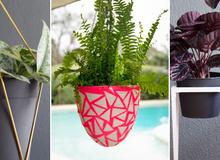 Nhà ấn tượng hơn với 3 cách trang trí chậu cây đơn giản mà đẹp mắt