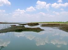 Kỳ thú hồ Sông Ray mùa nước cạn