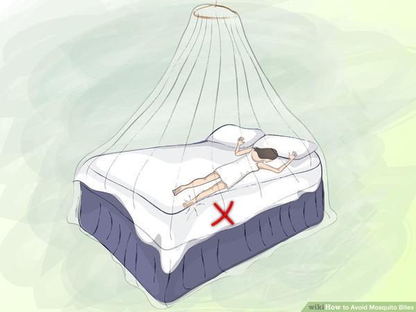 cách phòng tránh muỗi đốt