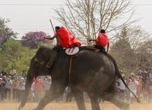 Hình ảnh đẹp trong lễ hội đua voi ở Buôn Đôn
