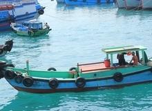 Khám phá những bí ẩn ngọt ngào trên đảo Phú Quý