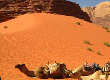 Những điều không nên bỏ lỡ ở Jordan